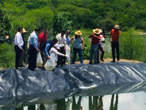 Combatirán escasez de mojarra tipalia en Yosocuta