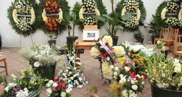 Francisco Toledo deja en la orfandad a las artes y a Oaxaca